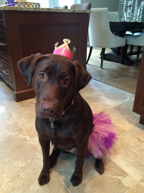Nola on her 1st Birthday!!