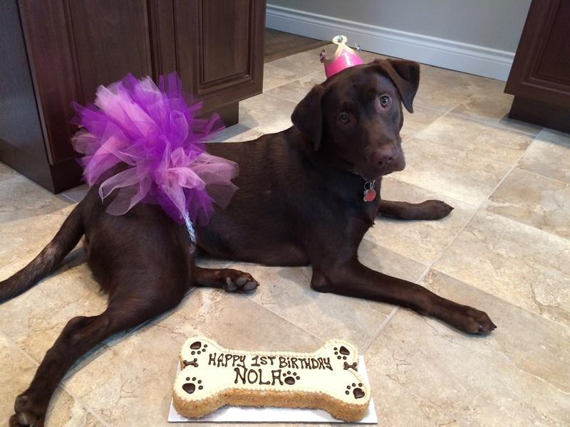 Nola on her 1st Birthday!!
